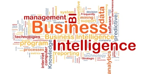 Business Intelligence Wortwolke