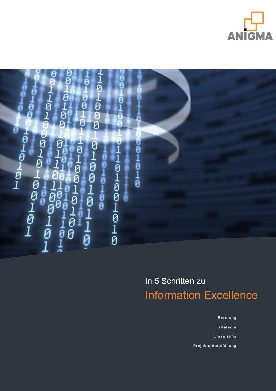 Information Excellence und Business Intelligence für den eigenen Wettbewerbsvorteil nutzen