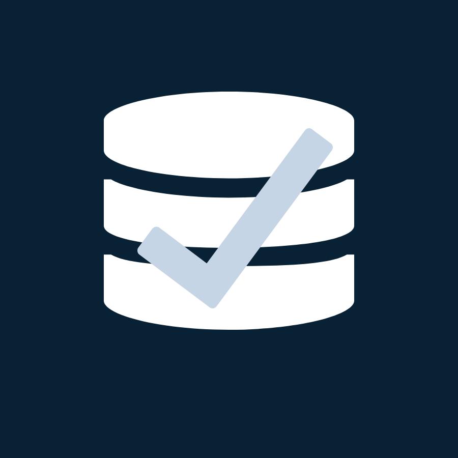 Icon Finanz Daten, Datenqualität
