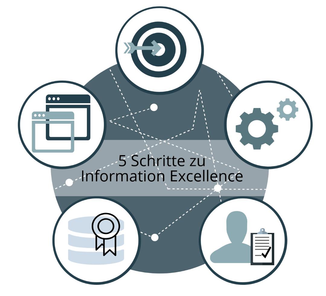 5 Schritte zu Information Exellence