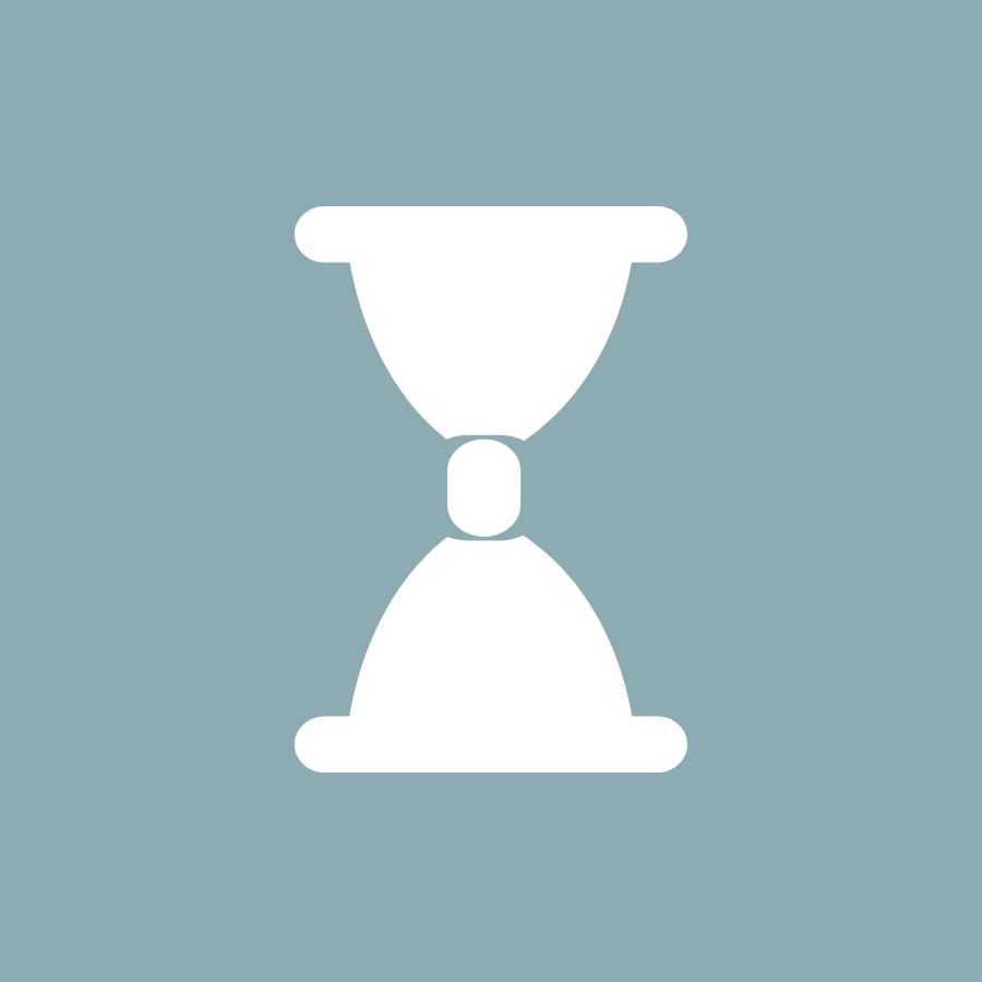 Icon Systemintegration zeit sparen