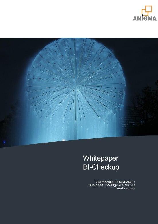 Vorschau Whitepaper BI-Checkup